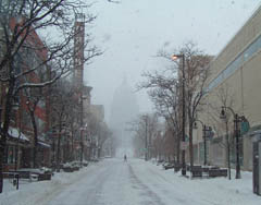 Snowy State St., Madison