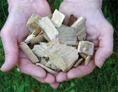 biomass.jpg