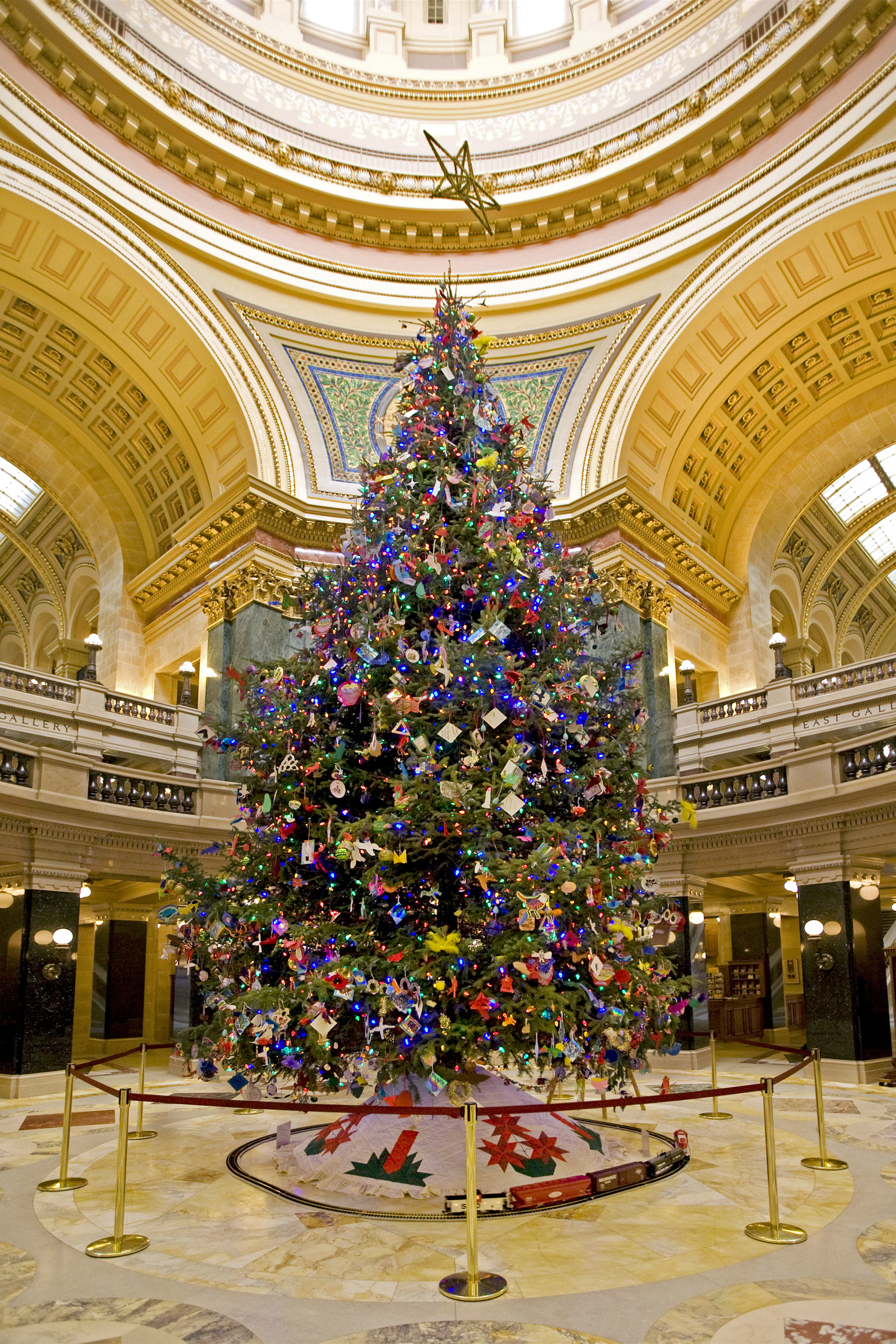 Image result for capitol christmas tree madison wi
