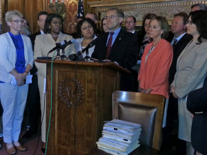 Assembly Democrats decided not to introduce state budget amendments (Photo: Andrew Beckett)