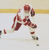 1990 hockey badger
