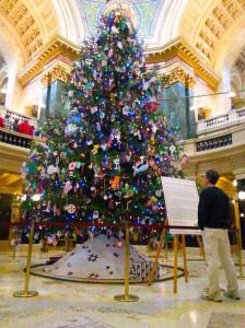 2013 Capitol Christmas tree (PHOTO: Jackie Johnson)