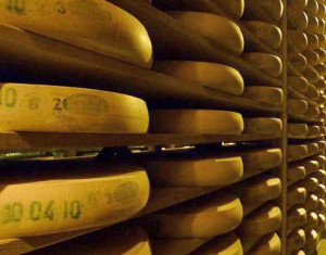 PHOTO: Wisconsin Cheese Makers Association