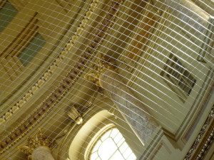 Netting installed at the Capitol building (PHOTO: Jackie Johnson)
