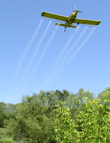 A Gypsy moth suppression plane (Photo: DNR)