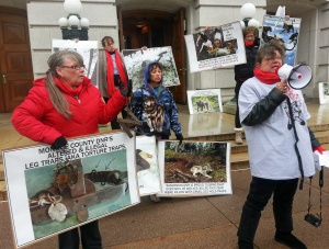 Wolf hunt opponents protest at the Capitol (Photo: Andrew Beckett)