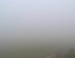 Heavy fog in Wisconsin (PHOTO: Jackie Johnson)
