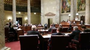 Senate floor debate (PHOTO: Jackie Johnson)