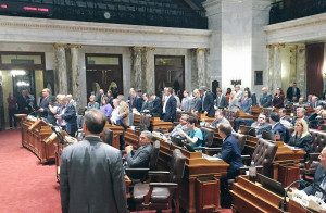 Democrats stand on the Assembly floor to indicate their recusal from voting. (Photo: Office of Rep. Peter Barca)