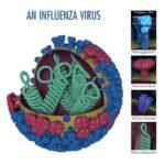 Flu cases spike in Wisconsin