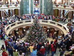 capitol tree (File photo: Jackie Johnson)
