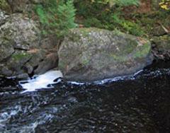 Brunsweiler River: WI DNR