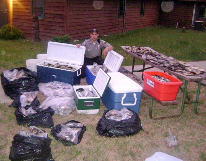 Conservation Warden Tom Heisler, Winter, with 2,238 panfish seized from 13 men in a case of overbagging on the Chippewa Flowage.  It took DNR officials about six hours to count the fish that were contained in coolers, tubs and plastic bags.