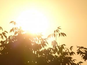 Hot sunny day in Wisconsin (PHOTO: Jackie Johnson)