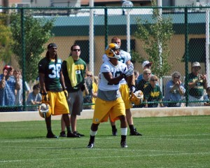Cobb fields punts