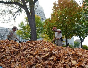 Cleaning up leaves at Wisconsin's Capitol (PHOTO/file: Jackie Johnson)