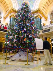 2013 Capitol Christmas tree (PHOTO: Jackie Johnson)