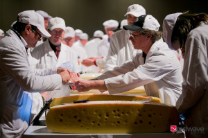 Experts judge over 2,600 cheese entries. (PHOTO: World Championship Cheese Contest in Madison, Wisconsin.)