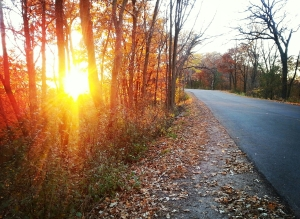Wisconsin road with sunset (PHOTO: Jackie Johnson)